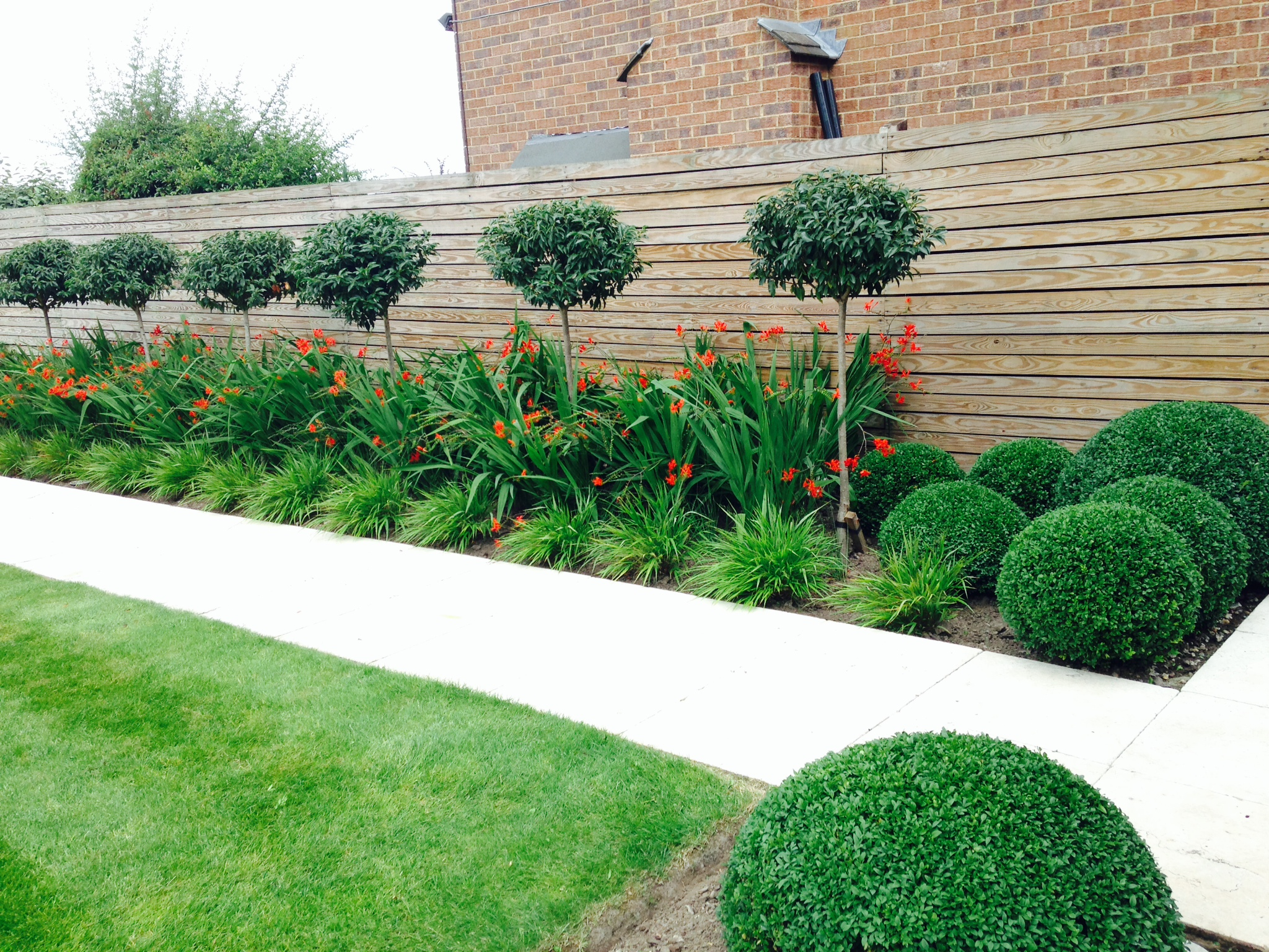 Garden Maintenance - Border Care and Topiary Maintenance