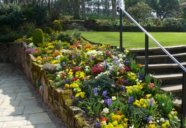 Flower Bed and Border Examples