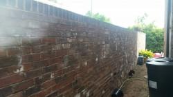 Brick Wall, Watson, Cheadle (6)