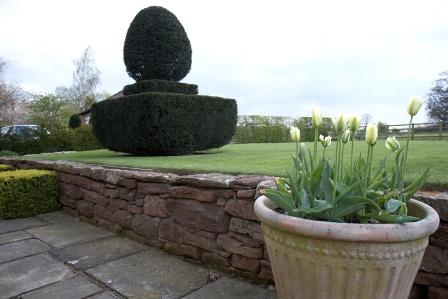 Gardener in Wybunbury
