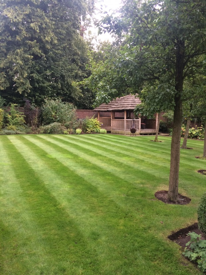 Private garden maintenance services professional for General garden maintenance