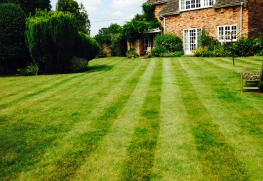 Regular Lawn Care for Large Gardens