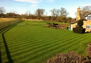 Regular Maintenance for Lawns and Hedges