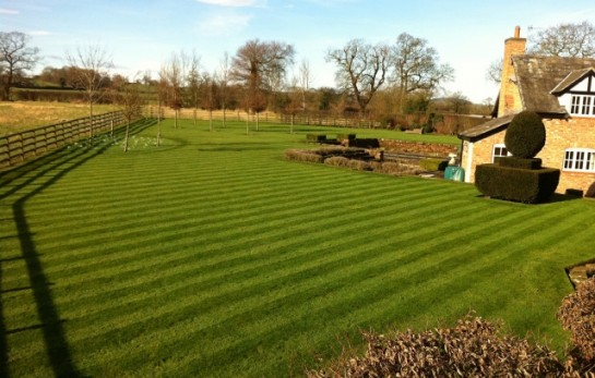 Grounds Care and Maintenance