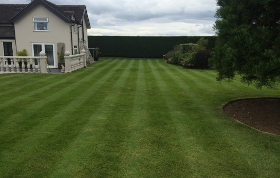 Garden Maintenance in Crewe