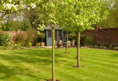 Tree Surgeon in Cheshire