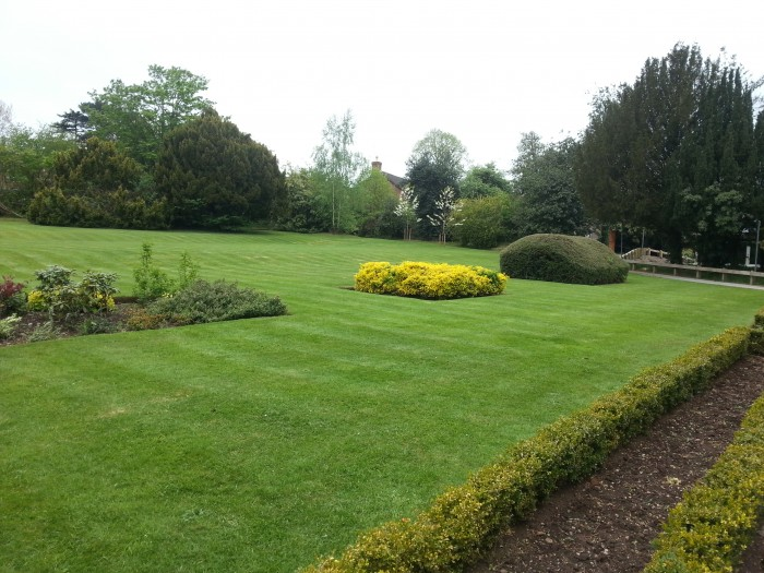 Commercial Maintenance including Lawn and Border care