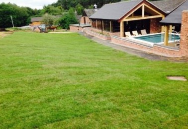 Turf Laying and Aftercare