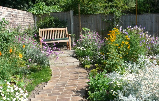Wildflower Garden Care and Border Maintenance