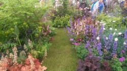 Floral Display Gardeners World Live