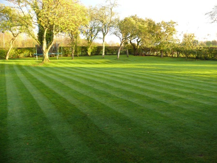 Gardener in Prestbury - Lawn Care