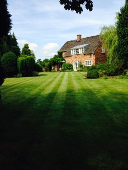 Lawn Mowing, Large Lawn, Holmes Chapel 1