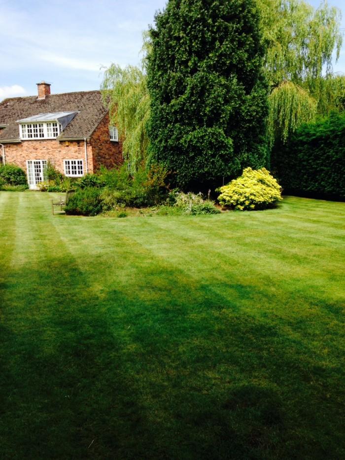 Garden Maintenance in Endon