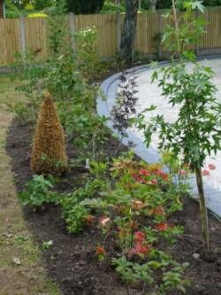Border planting, stone edging, Foley, Meir 1