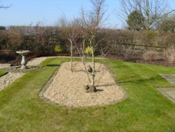 Garden Maintenance in Alderley Edge