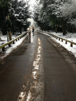 Snow Clearing - Drive