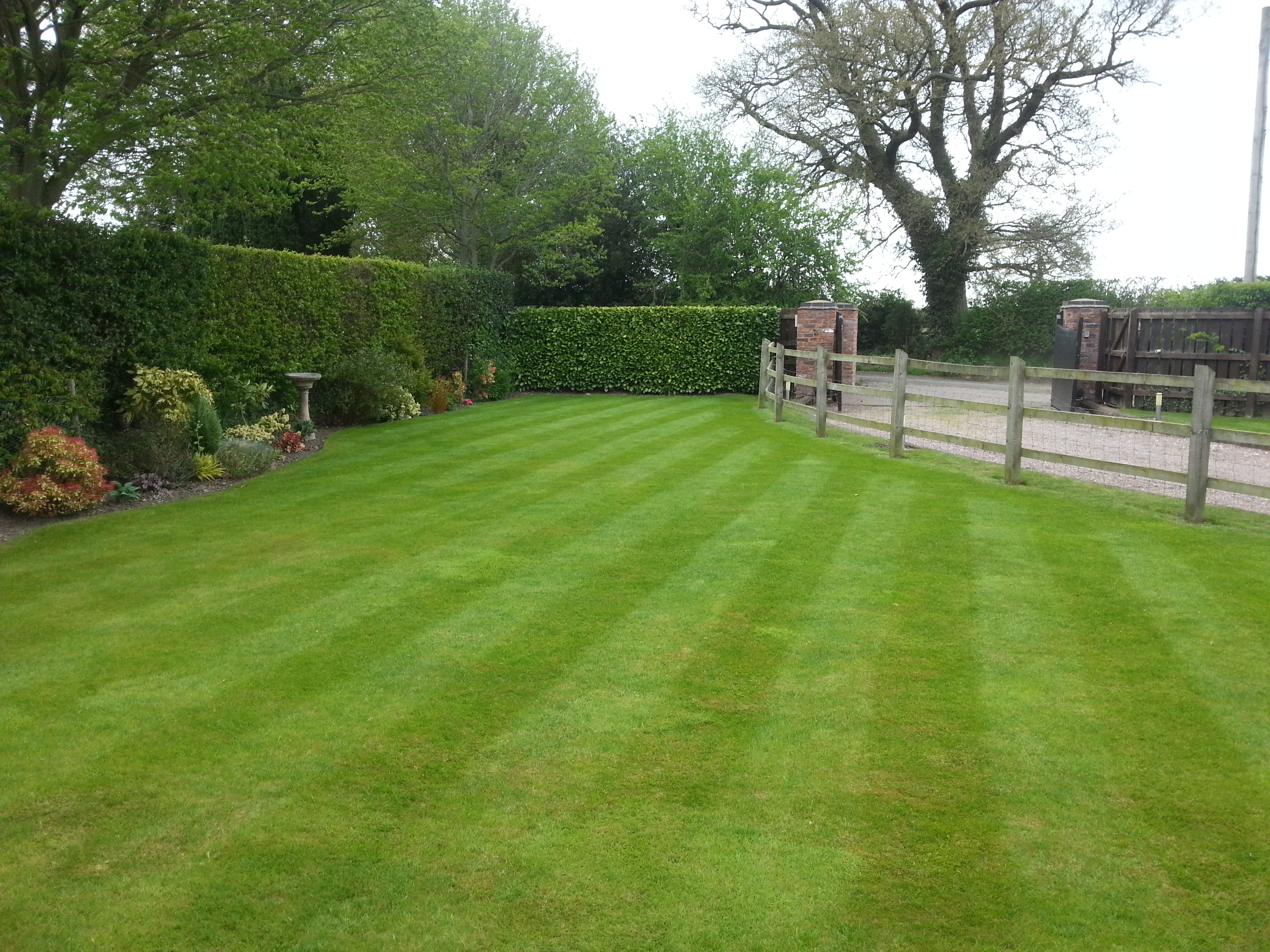 Mowing, Borders, Hedges, 1