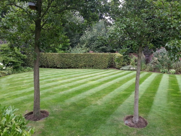 Gardener in Rudyard - Lawn Care