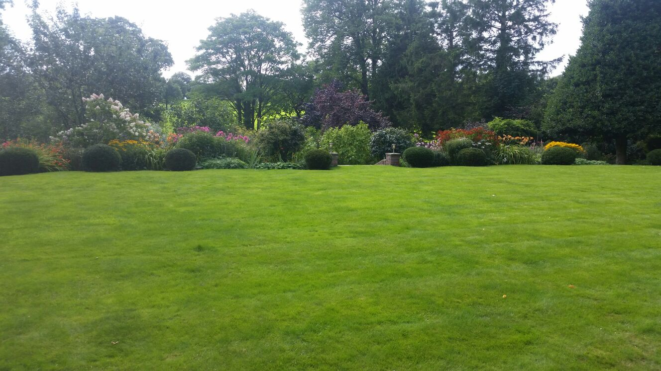 Professional Gardener in Longton
