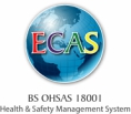 BSOHSAS18001-HealthSafetyManagementSystem