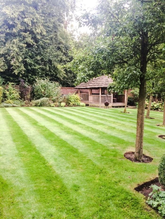 Professional Gardener in Nantwich, Cheshire