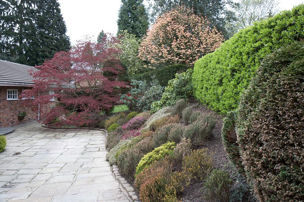 Professional Gardener in Trentham
