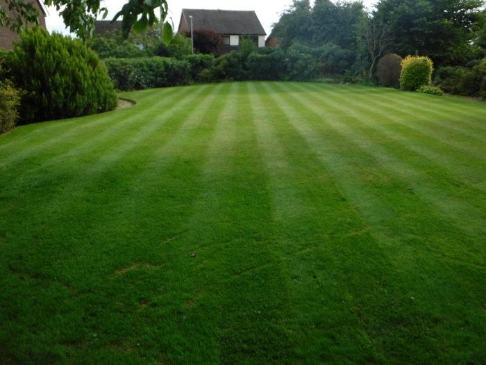 Professional Gardener in Market Drayton - Lawn Mowing