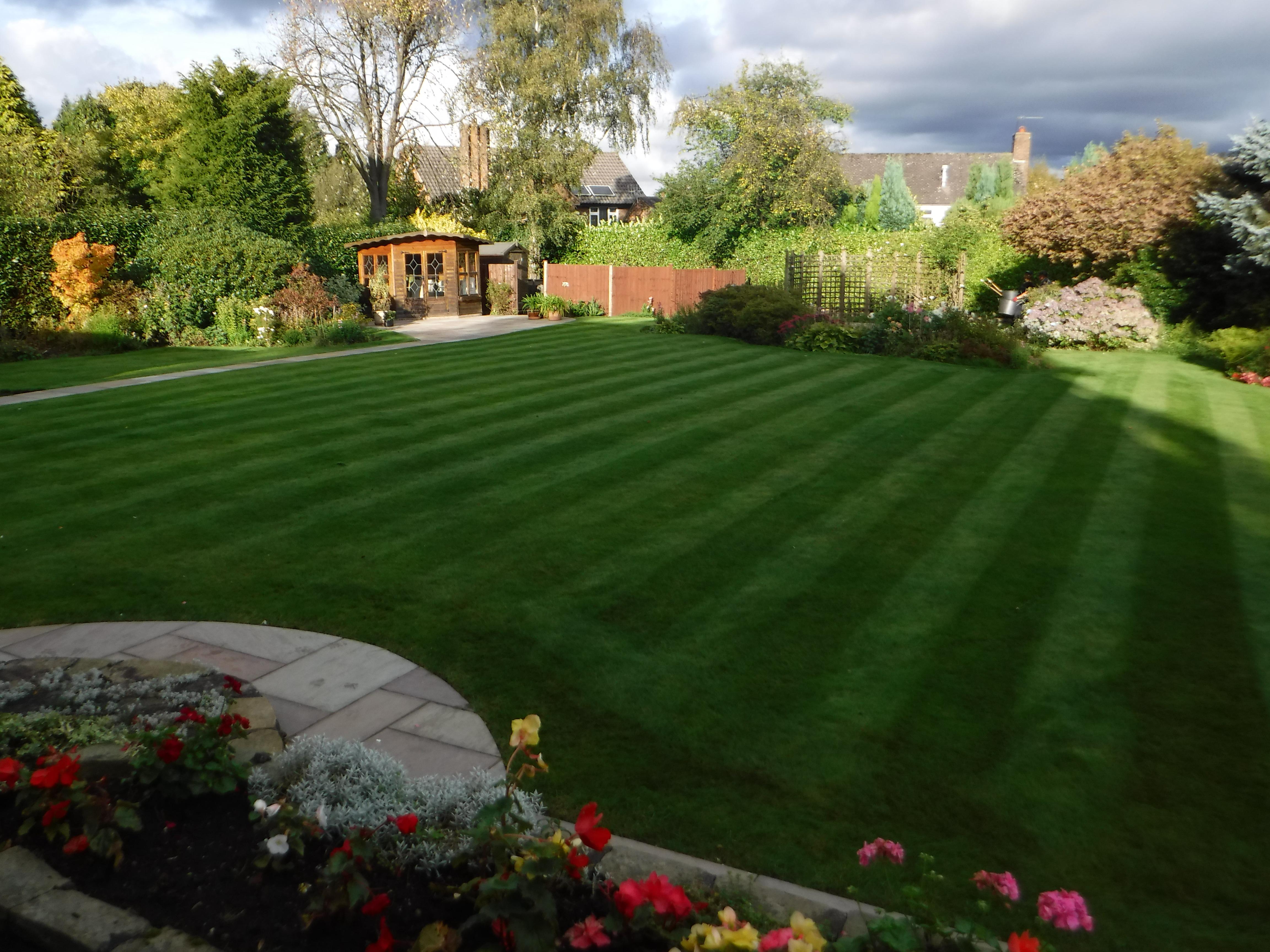 Professional Gardener in Kidsgrove