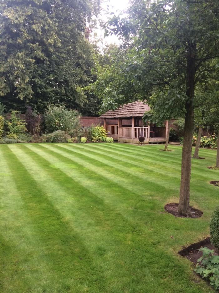 Professional Gardener in Alton