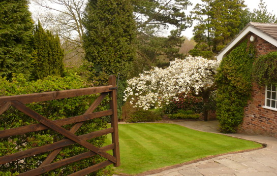 Professional Gardener in Cheshire