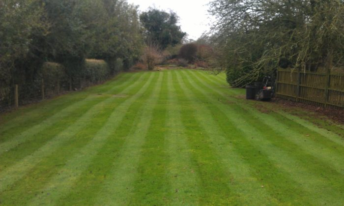 Lawn Mowing - Professional Gardener in Cheadle, Staffordshire