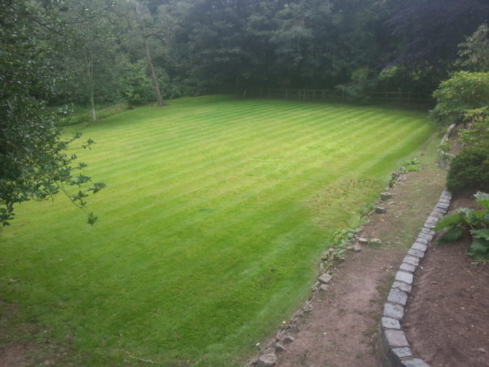 Professional Gardener in Trentham - Lawn Mowing