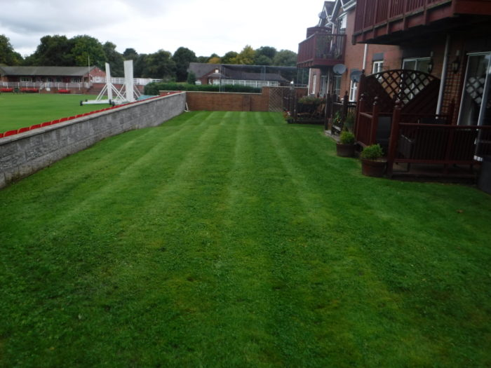 Professional Gardener in Longton