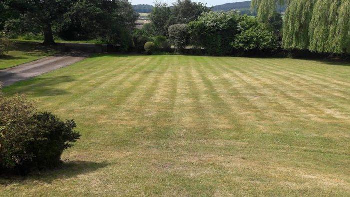 Professional Gardener in Cheadle, Staffordshire