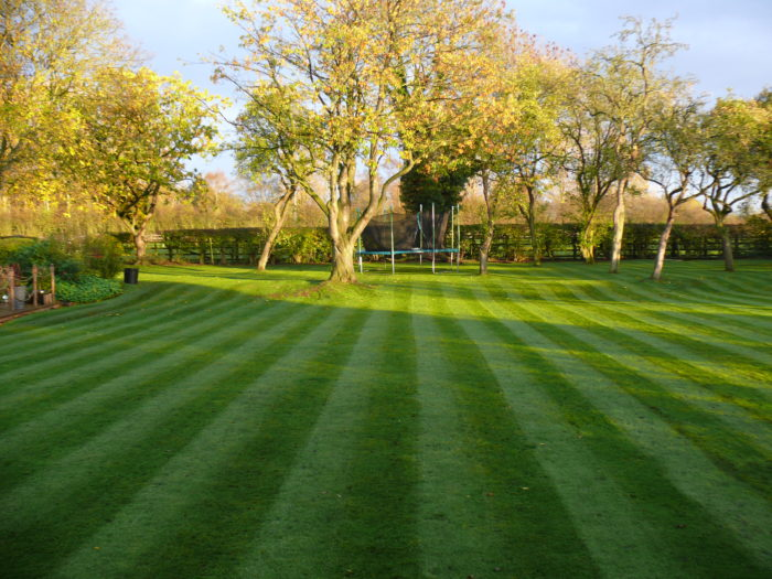 Garden Maintenance - Gardener in Timbersbrook