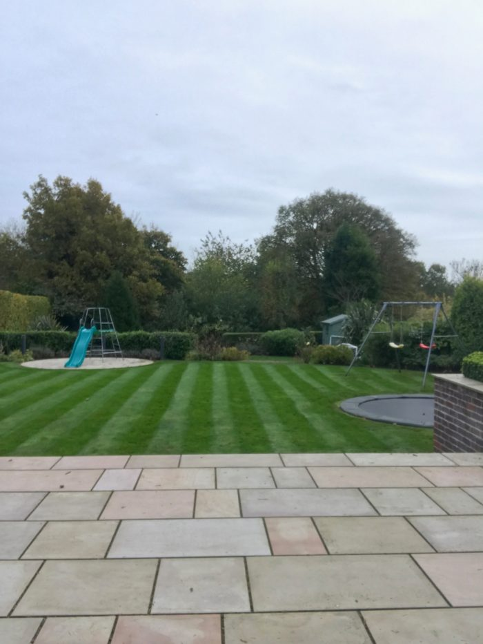 Professional Gardener in Newcastle under Lyme - Lawn Care