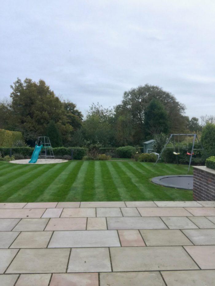 Professional Gardener in Nantwich