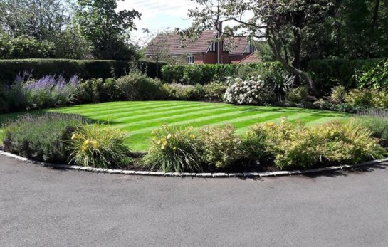 Professional Gardener in Newcastle under Lyme