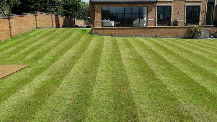Professional Gardener in Swynnerton - Lawn Mowing