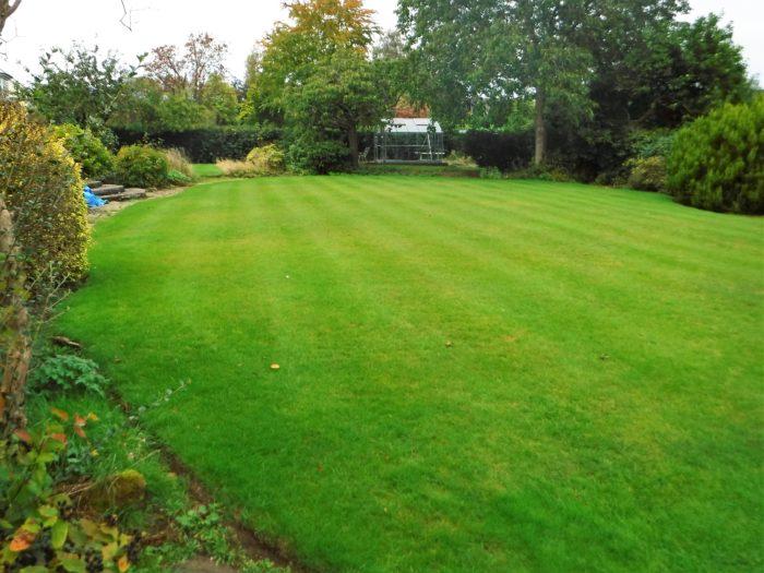 Garden Maintenance - Swynnerton