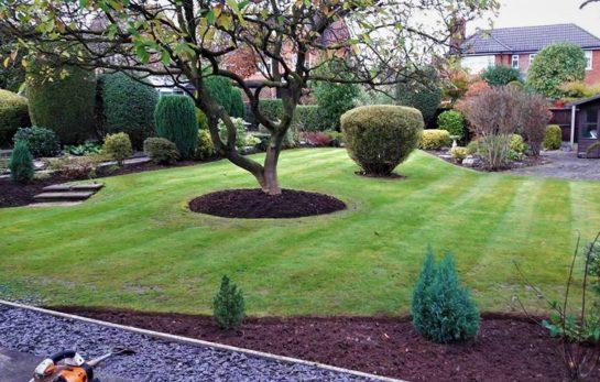 Gardens Winter Tidy-Up - JHPS Gardens Ltd