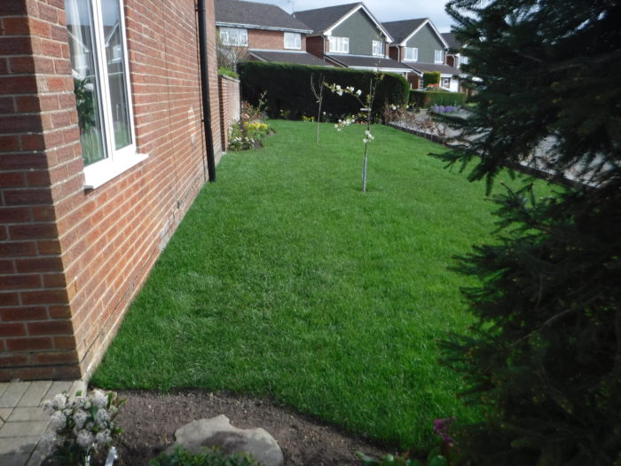 Landscaping - Turfing and Planting up