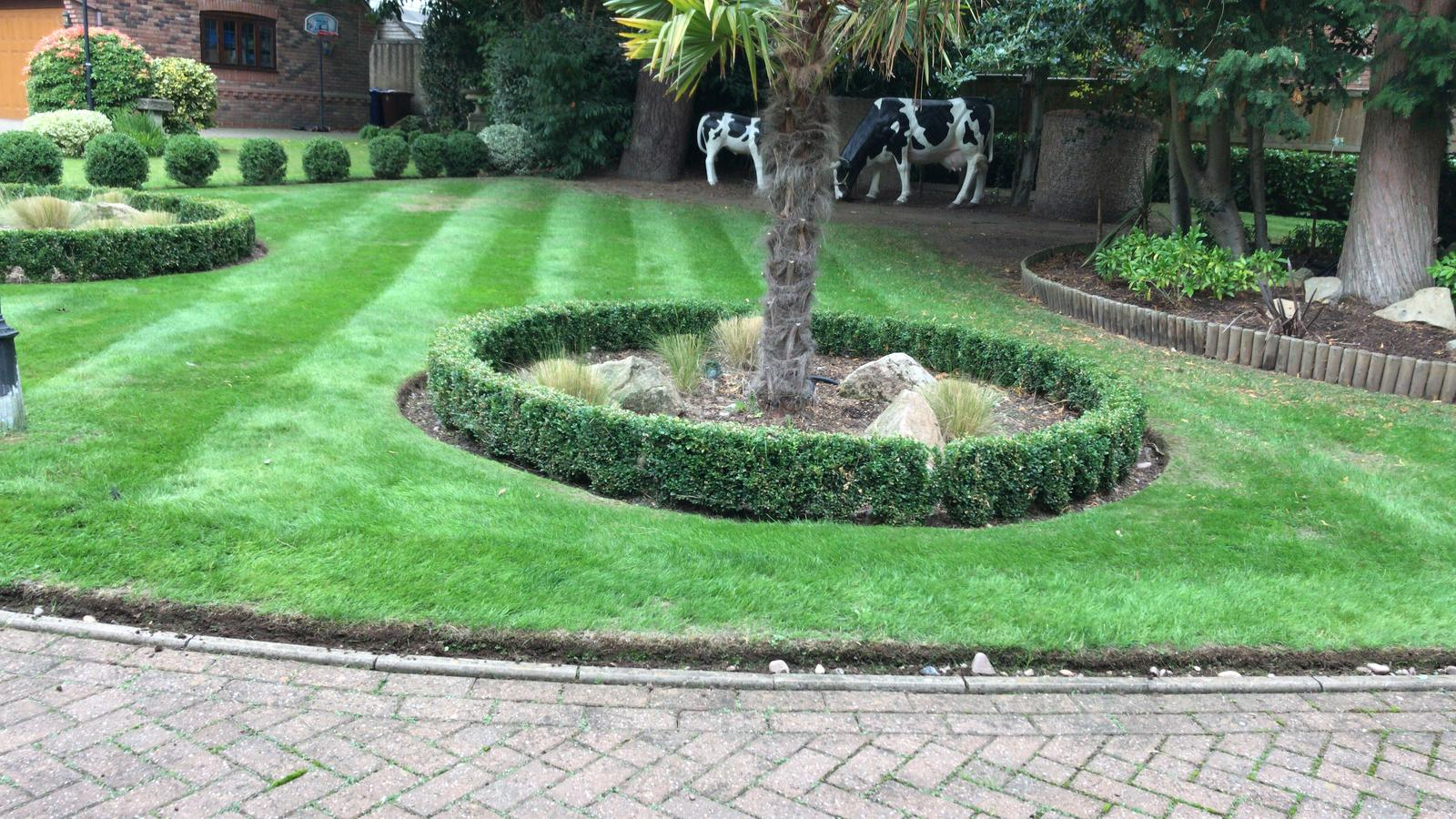 Professional Gardener in Stoke-on-Trent