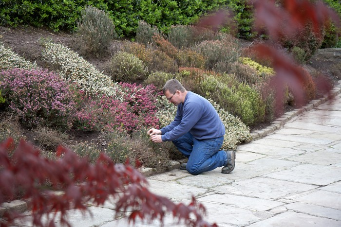 Commercial Garden Maintenance