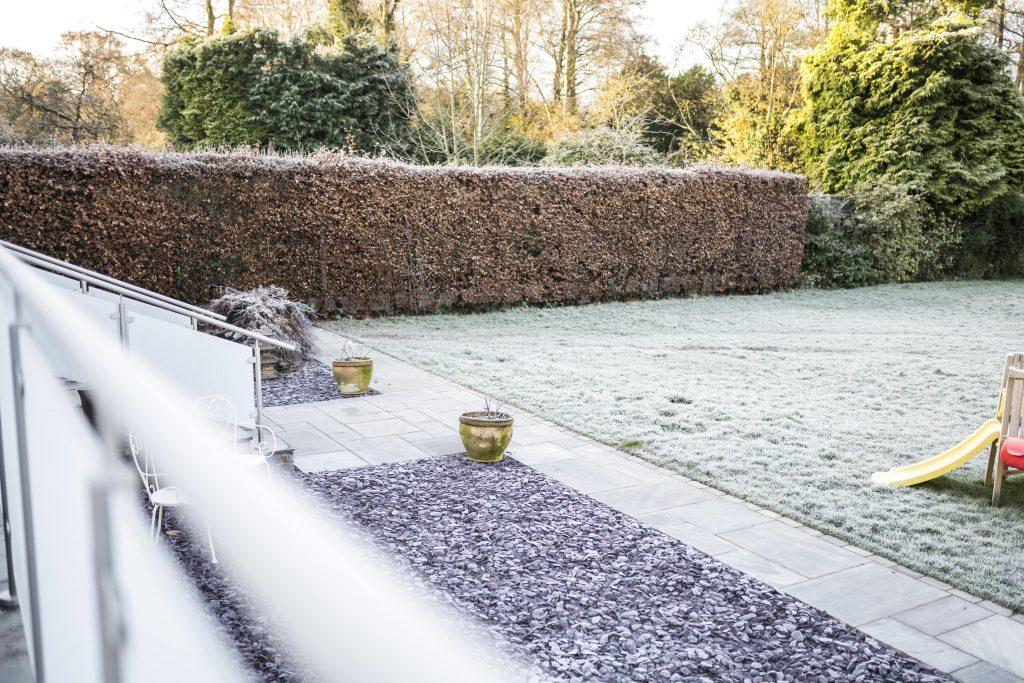 25. Frosty Garden