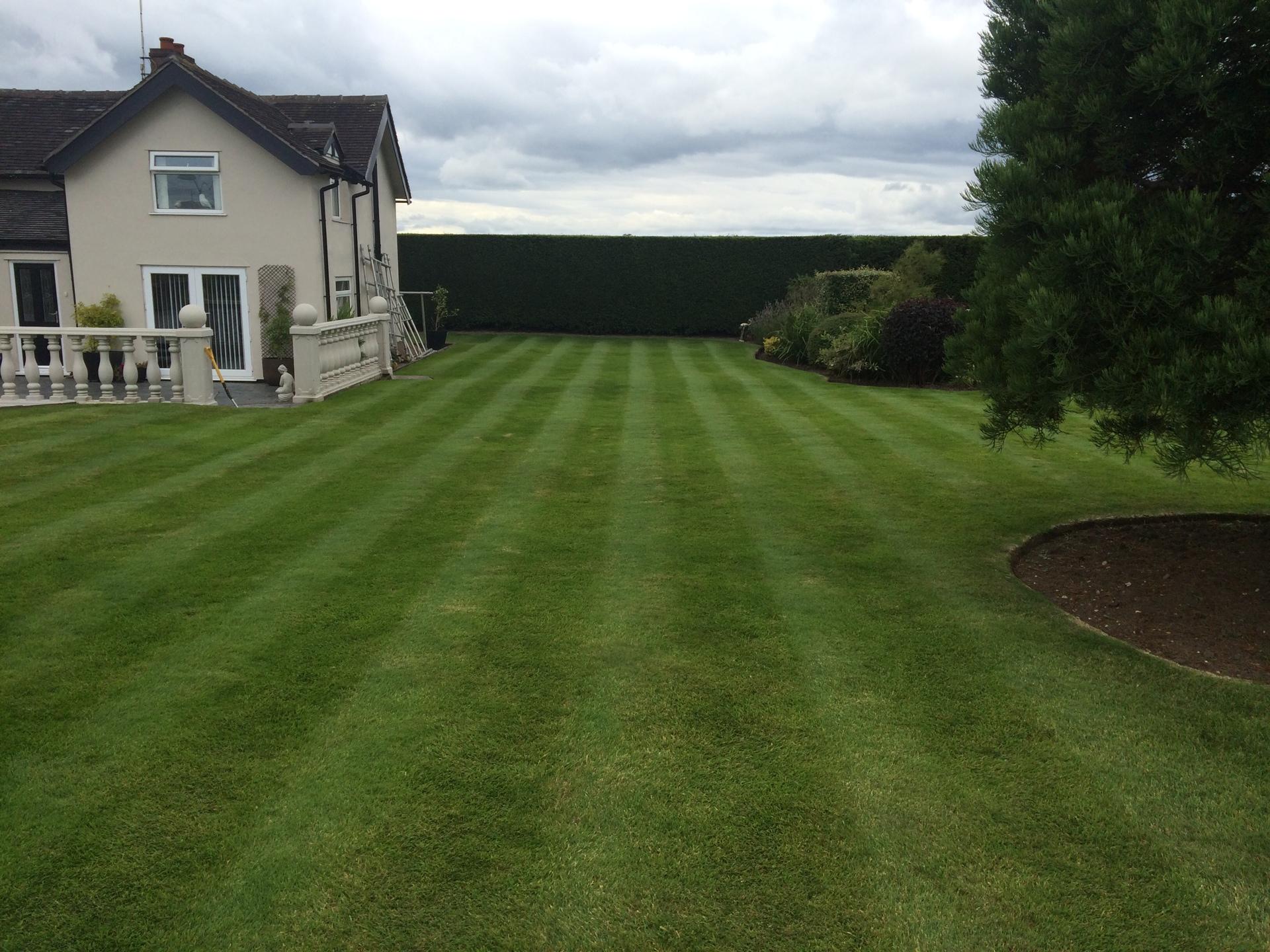 Garden Maintenance in Crewe