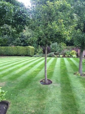 Gardener Crewe