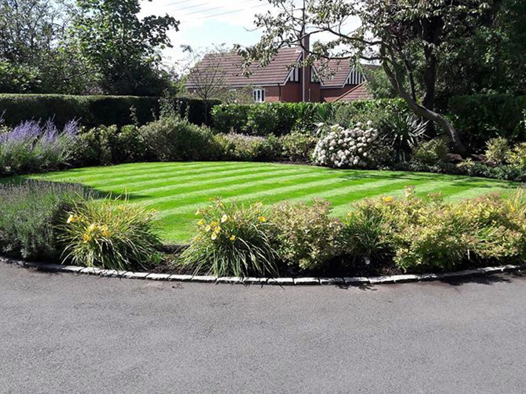 Professional Gardener in Newcastle under Lyme