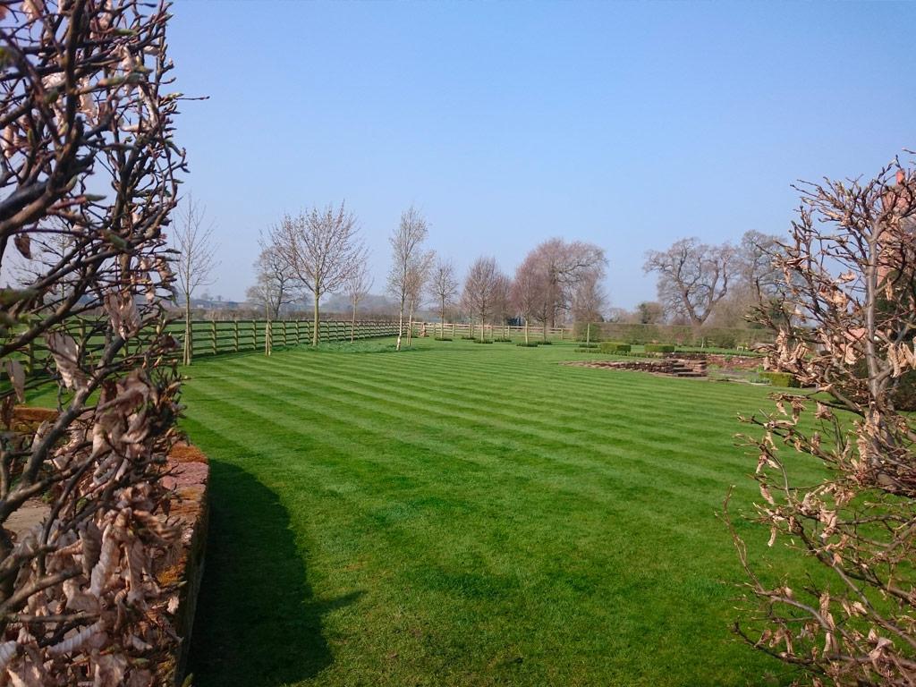 Gardener in Macclesfield