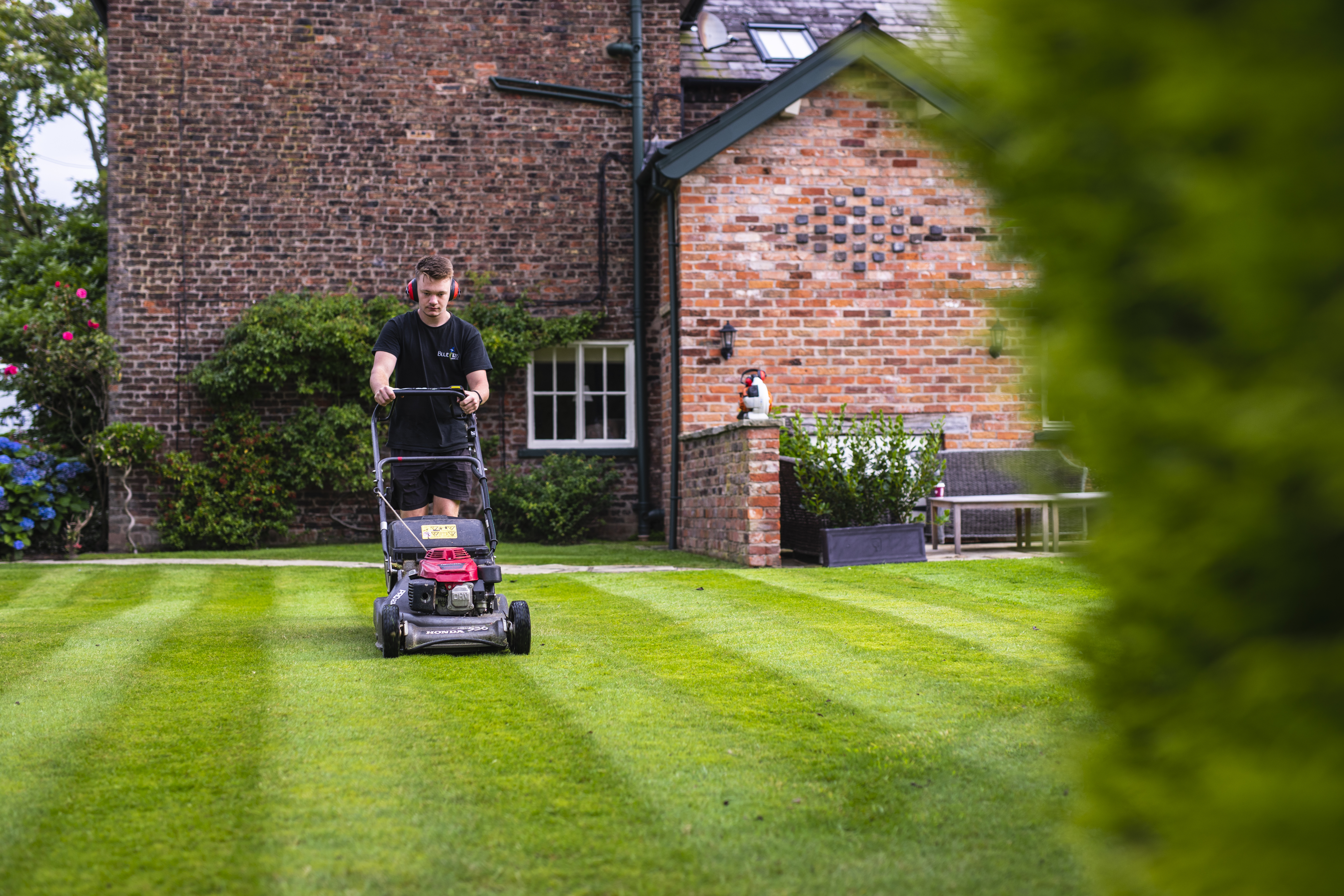 Spring Garden example. Maintenance team mowing stripes into the lawn. Staffordshire